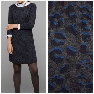 Ann Taylor Loft Cheetah Print Sweater Dress